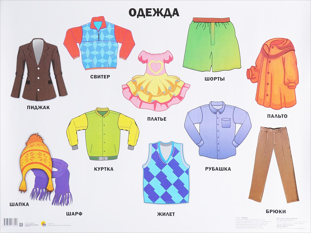 одежда в картинках для доу россии считает