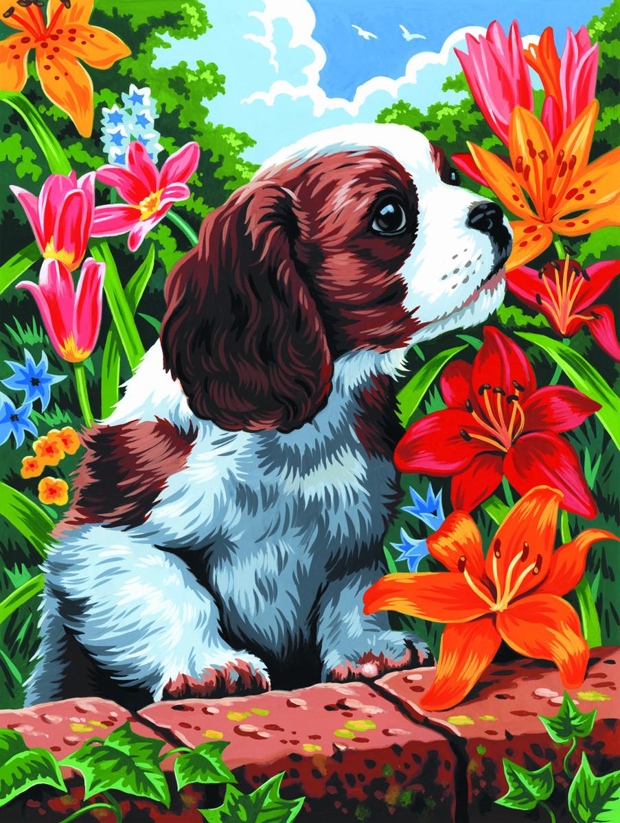 Картинки для детей с животными и цветами